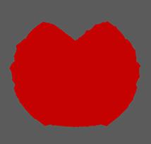 FOCHS NY Logo
